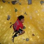 RIS-Summer-Tapestry-Rock-Climbing-2010-web